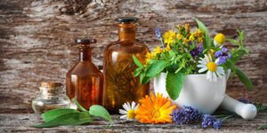 Pflanzenextrakte gegen Venenleiden