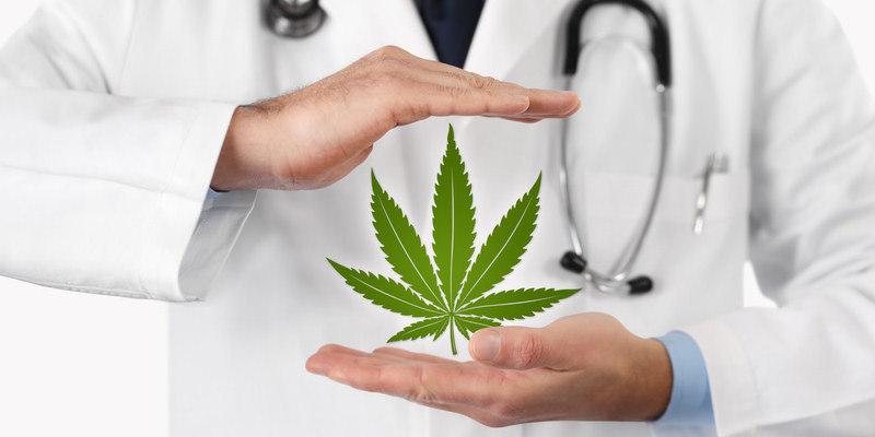 Cannabis Ratgeber - rechtliches - medizinischer Nutzen - Wirkungen