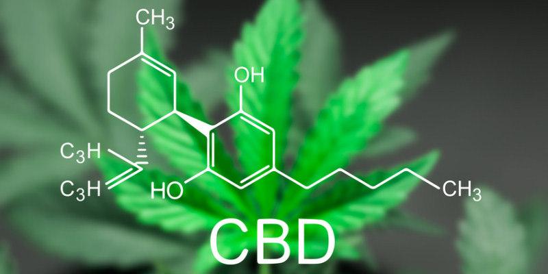 CBD Wirkung bei Rheuma