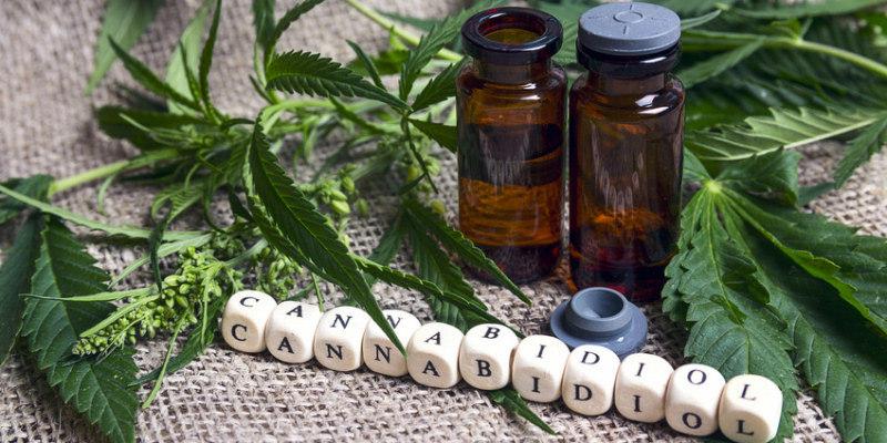 Diese Cannabinoide beinhaltet CBD-Öl für Kinder