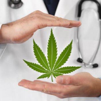 Aktuelle Situation rund um Cannabis - voranschreitende Legalisierung